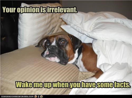 bed,best of the week,blankets,boxer,evidence,extraordinary claims require extraordinary evidence,facts,irrelevant,proof,resting,scientific method,sleep,unimpressed,wake me up,wake up