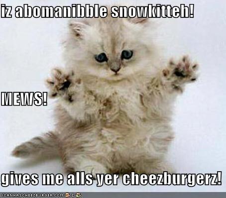 Cheezburger Image 4017228544