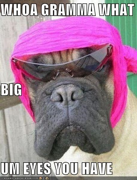 exclamation gramma great dane Little Red Riding Hood what big eyes whoa you have - 4018326528