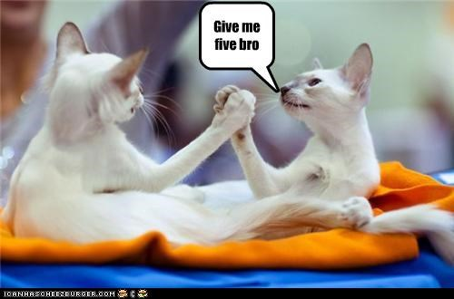 Give me five bro