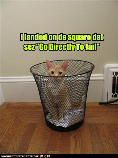 caption captioned cat cute Go Directly To Jail jail monopoly trashcan - 4018395136