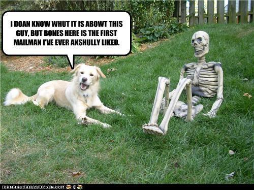 dont-understand golden retriever happy like mailman skeleton - 4018515968