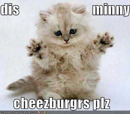 Cheezburger Image 4018613248