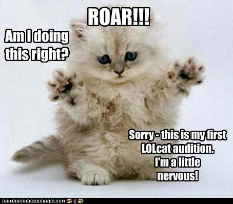 Am I doing this right? Sorry - this is my first LOLcat audition. I'm a little nervous! ROAR!!!
