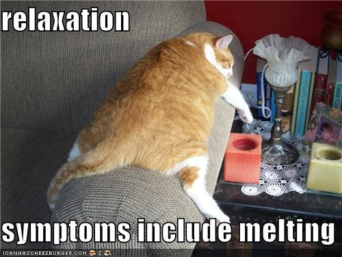 caption captioned cat couch melting napping relaxation relaxing symptoms