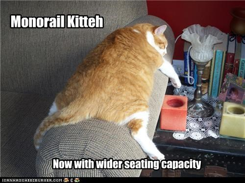Monorail Kitteh Now with wider seating capacity