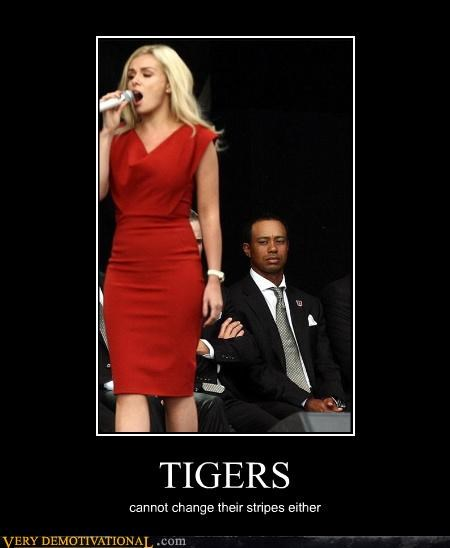 babes dat ass dress Sad sad but true Tiger Woods tigers - 4019894272