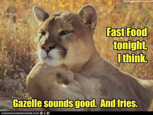 Fast Food tonight, I think. Gazelle sounds good. And fries.