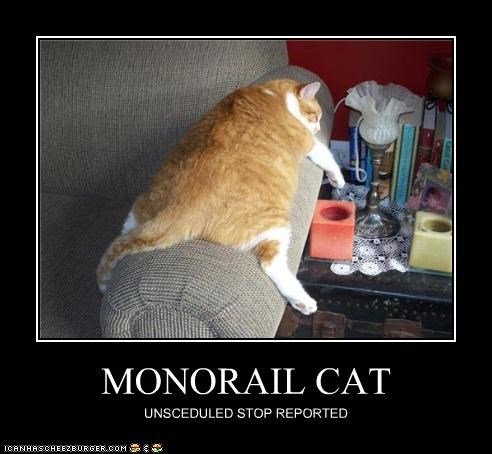MONORAIL CAT UNSCEDULED STOP REPORTED