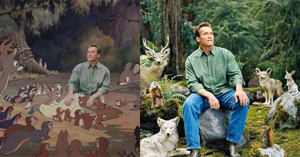 Arnold Schwarzenegger bosque