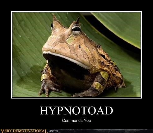 animals hypnotic hypnotoad mind control mythical Terrifying - 4024876544