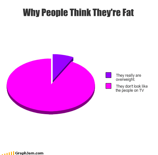 as seen on tv big boned fat garfield Pie Chart