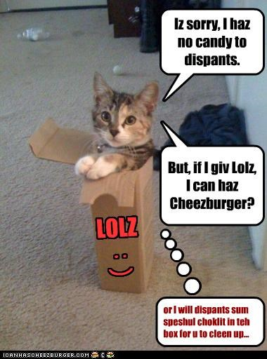 Cheezburger Image 4026270976