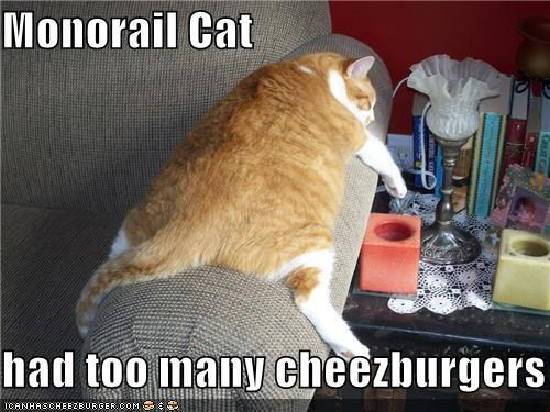 Cheezburger Image 4027002368