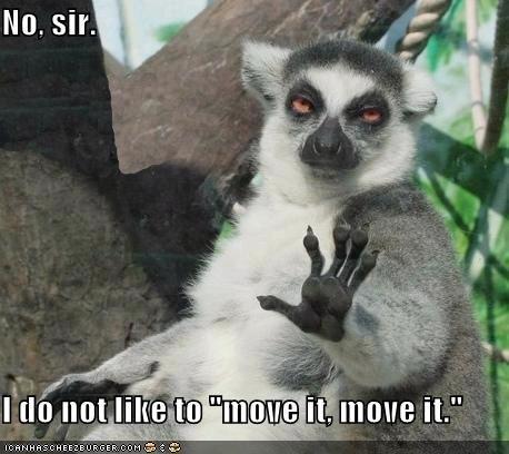 caption captioned disagreement do not like lemur move it no sir