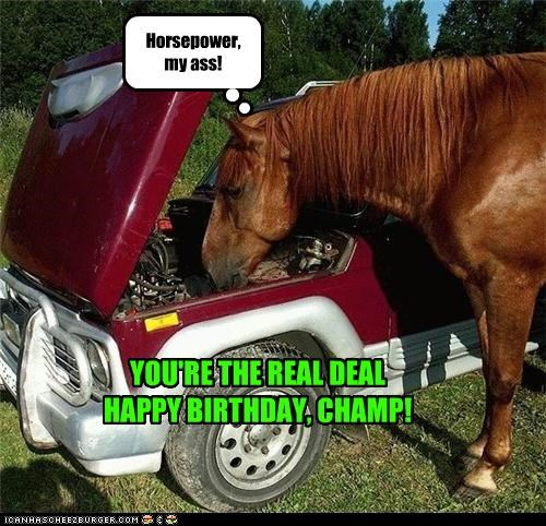 Horsepower, my ass! YOU'RE THE REAL DEAL HAPPY BIRTHDAY, CHAMP!