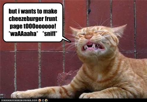 but i wants to make cheezeburger frunt page tOOOoooooo! *waAAaaha* *sniff*