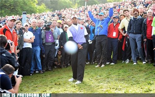 celeb Celebrity Edition golf photobomb sports Tiger Woods turban guy - 4031463424