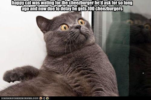 Cheezburger Image 4032471552