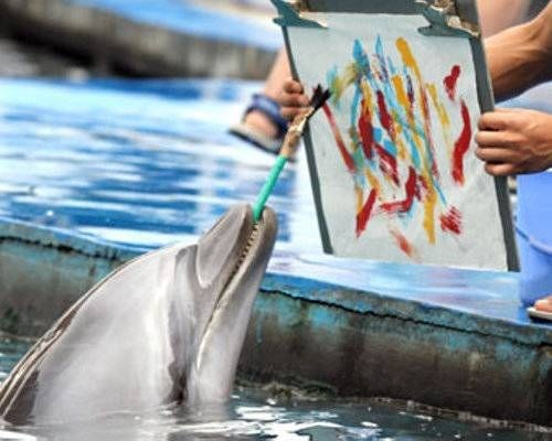 Animals that paint beautiful works of art