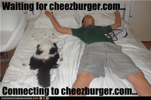 Cheezburger Image 4033229312