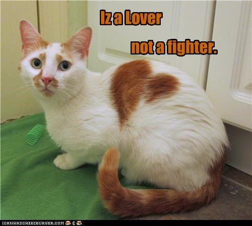 Iz a Lover not a fighter.