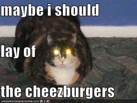 Cheezburger Image 4033736704