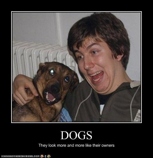 critters,derp,dogs,owners,the resemblance is uncanny