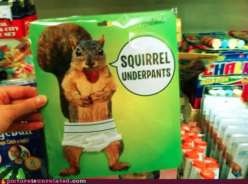 clothes,shopping,squirrels,underwear,wtf