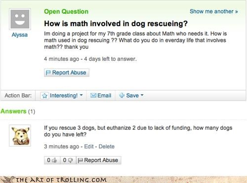 dogs,euthanasia,food,math,pets,rescue,useful