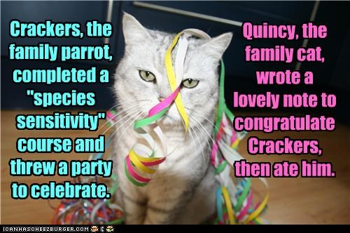 "Crackers, the family parrot, completed a ""species sensitivity"" course and threw a party to celebrate. Quincy, the family cat, wrote a lovely note to congratulate Crackers, then ate him."