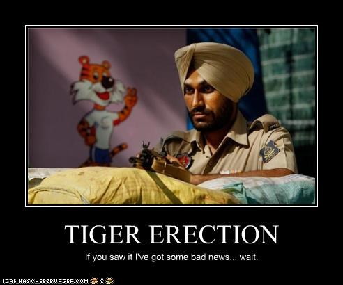 TIGER ERECTION If you saw it I've got some bad news... wait.