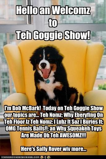 Hello an Welcomz to Teh Goggie Show! I'm Bob McBark! Today on Teh Goggie Show our topics are... Teh Nomz; Why Eberyfing On Teh Floor Iz Teh Nomz; I Lubz It Soz I Buries It; OMG Tennis Balls!!; an Why Squeakeh Toys Are Made Ob Teh AWESOMZ!!! Here's Sally Rover wiv more...