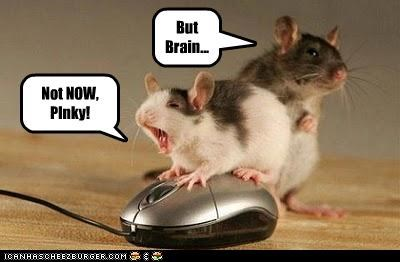 But Brain... Not NOW, PInky!