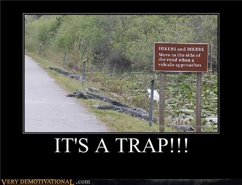 admiral ackbar alligator animals crocodile its a trap nature swamp Terrifying - 4038042880
