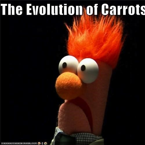 beaker carrots evolution food lolz the muppets - 4038563072