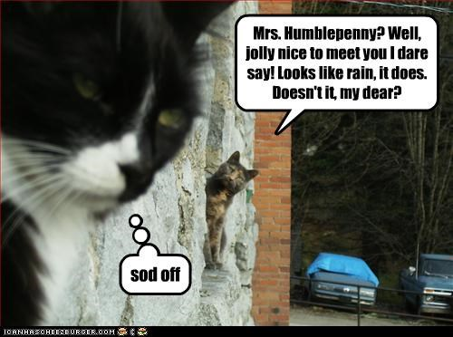 Mrs. Humblepenny? Well, jolly nice to meet you I dare say! Looks like rain, it does. Doesn't it, my dear? sod off
