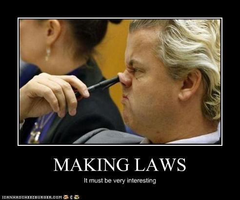 MAKING LAWS It must be very interesting