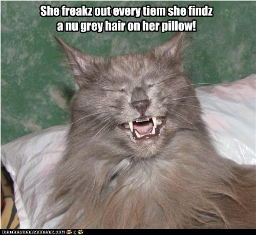 She freakz out every tiem she findz a nu grey hair on her pillow!
