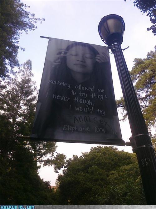 berkley college school - 4040032256