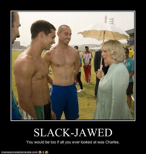 Camilla Parker-Bowles,demotivational,funny,Hall of Fame,lolz