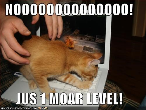 begging caption captioned cat computer game laptop level no one more please protesting resistance upset video game