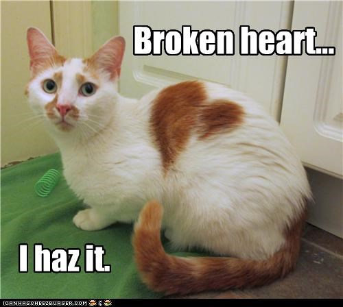 Broken heart... I haz it.