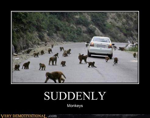 animals,monkeys,nature,suddenly,Terrifying,the wild,wtf