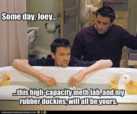 drugs,friends,lolz,matt leblanc,matthew perry,rubber ducks,TV