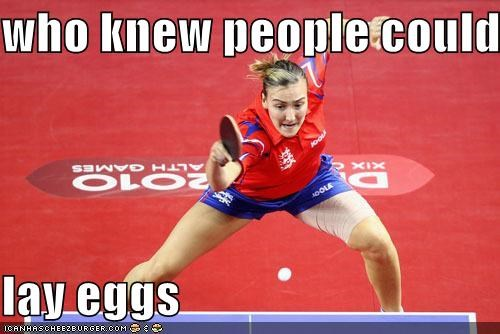 bricks,egg,lay,ping pong,Sportderps,table tennis