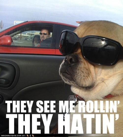 chamillionaire,driving,hating,lyrics,pug,ridin,rolling,sunglasses
