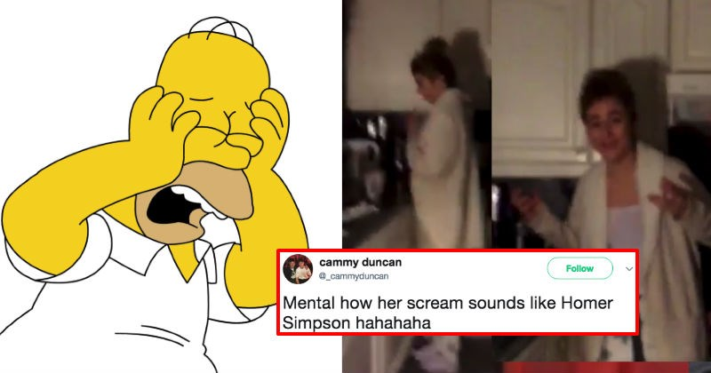 Little girl's scream ends up sounding just like Homer Simpson, and it left us speechless.