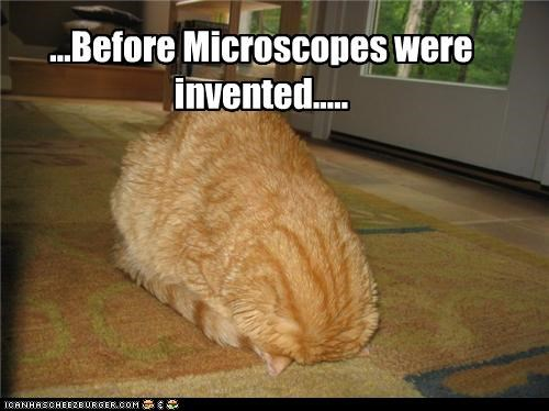 ...Before Microscopes were invented.....