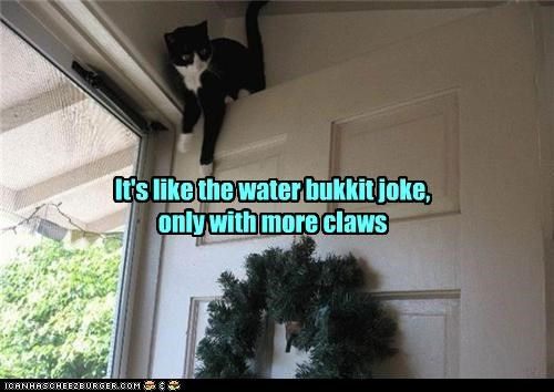 caption,captioned,cat,claws,door,joke,more,prank,waiting,water bucket